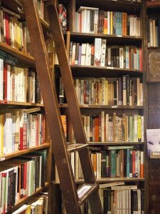 Bookshelves full of books in a bookstore, with a ladder to reach high shelves